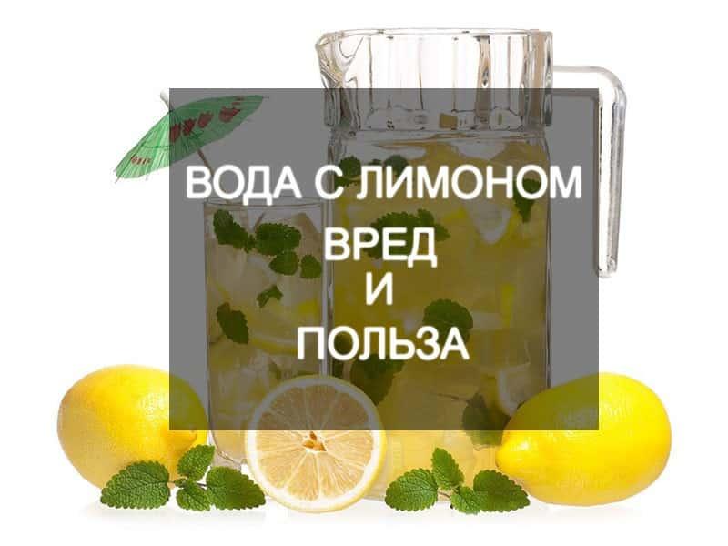 Вода с лимоном натощак: польза и вред для организма человека