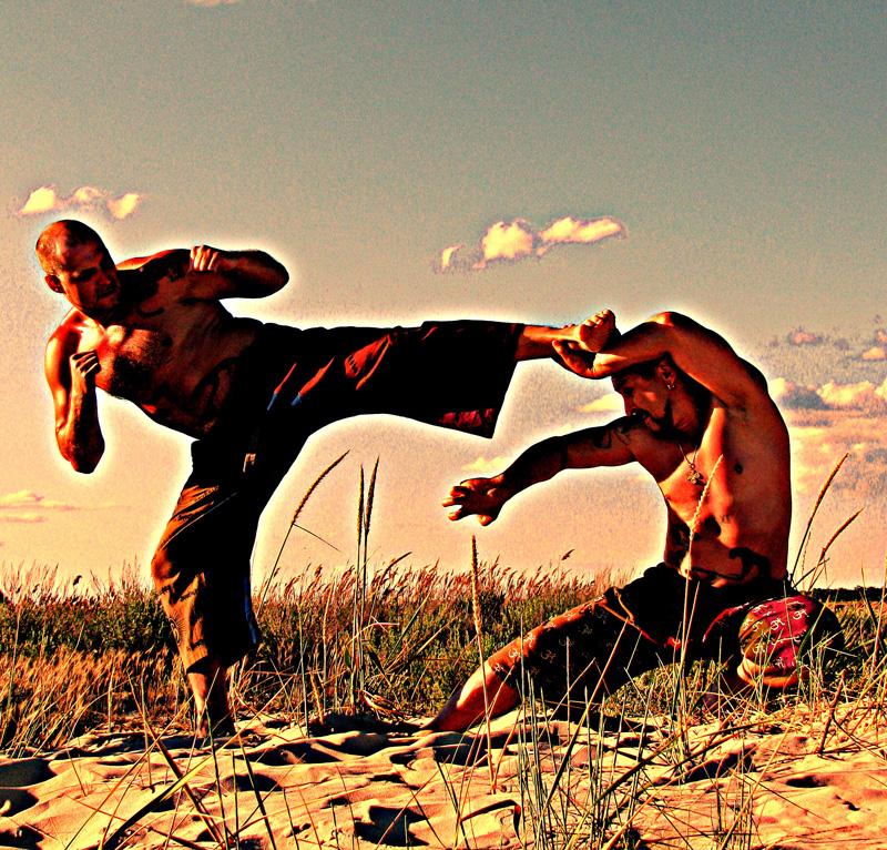 Боевые искусства – японии, китая, европы, россии, америки, рукопашные, с оружием, мечом, элементами танца, ударами ногами, женские