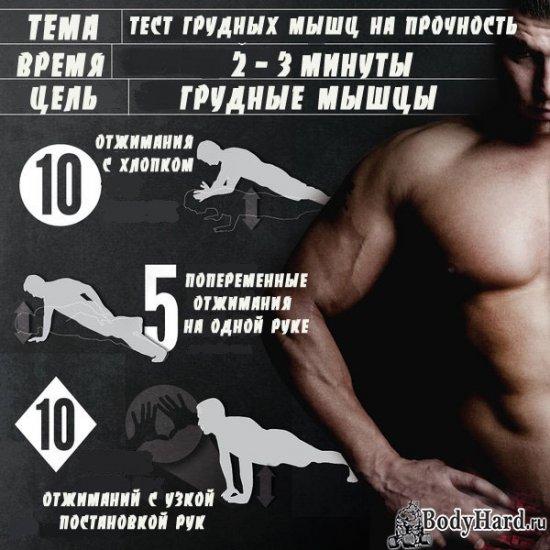 Грудные мышцы — как правильно качать? базовые упражнения на грудь
