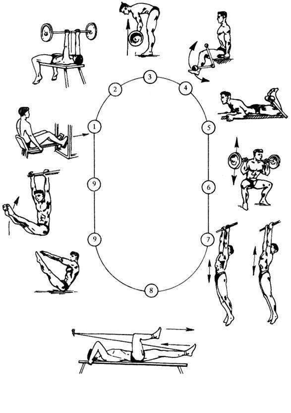 Жиросжигающие тренировки для мужчин