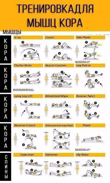 Мышцы кора: упражнения для мужчин и женщин в домашних условиях