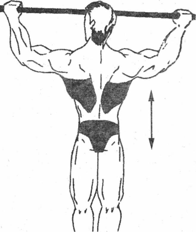 Подтягивание груди к перекладине: техника выполнения упражнения