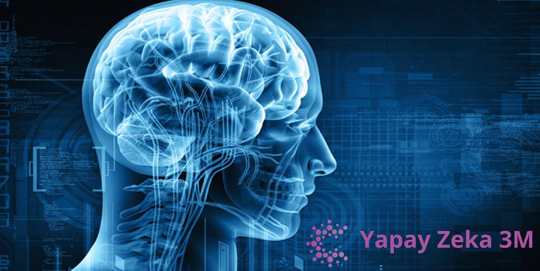 Глава 3 как перестроить свой мозг ученый изменяет мозг: улучшение восприятия и памяти, скорости мышления