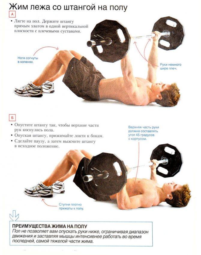 Упражнения для груди: эффективная программа для мужчин и женщин