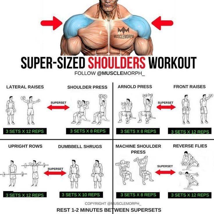 Суперсеты: упражнения для всего тела. жиросжигающие тренировки в тренажерном зале