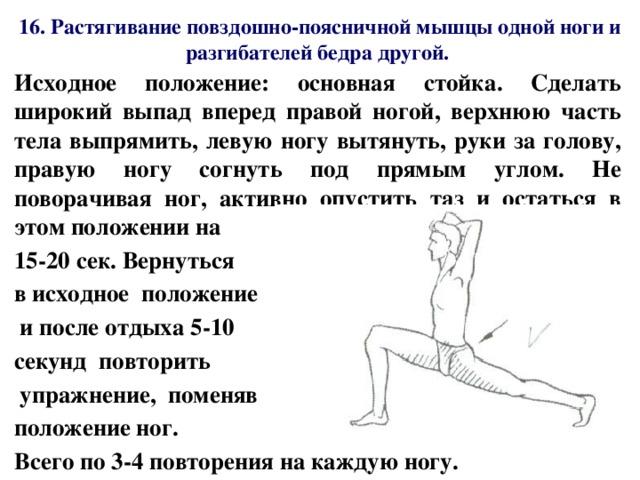 Подвздошно-поясничная мышца: где находится, эффективные упражнения на ее растяжку