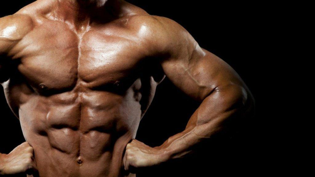 Гипертрофия мышц, что это такое. гипертрофия мышц. бодибилдинг - ликбез:, что такое гипертрофия мышц.