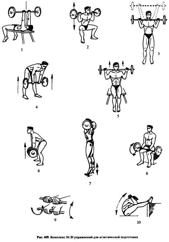 Гимнастика для начинающих: с чего начать, как выбрать направление?