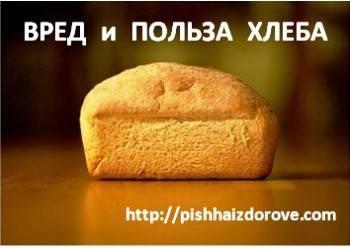 Хлеб: польза и возможный вред | польза и вред