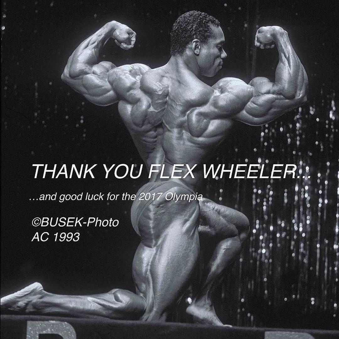 Флекс уиллер (flex wheeler) биография и бодибилдинг