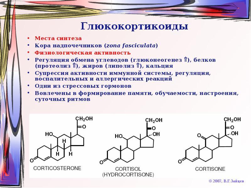 Гормон кортизол при похудении