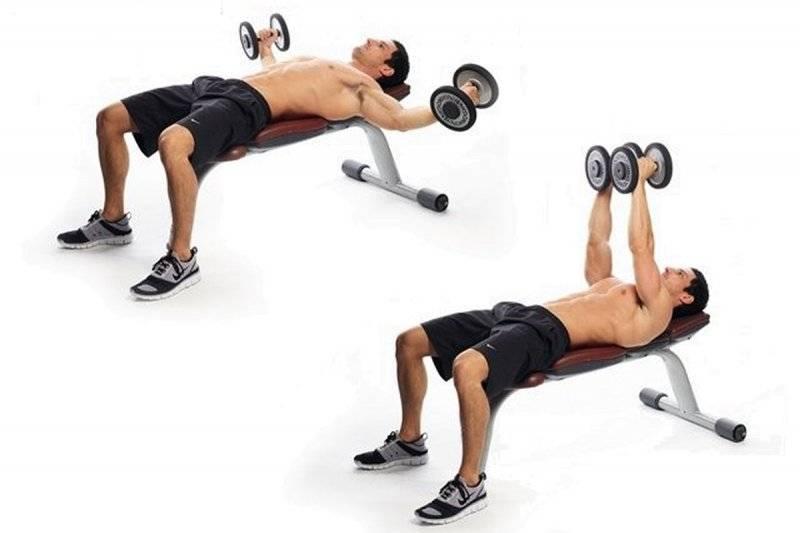 Разведение гантелей лежа: техника для грудных мышц, частые ошибки, чем заменить упражнение