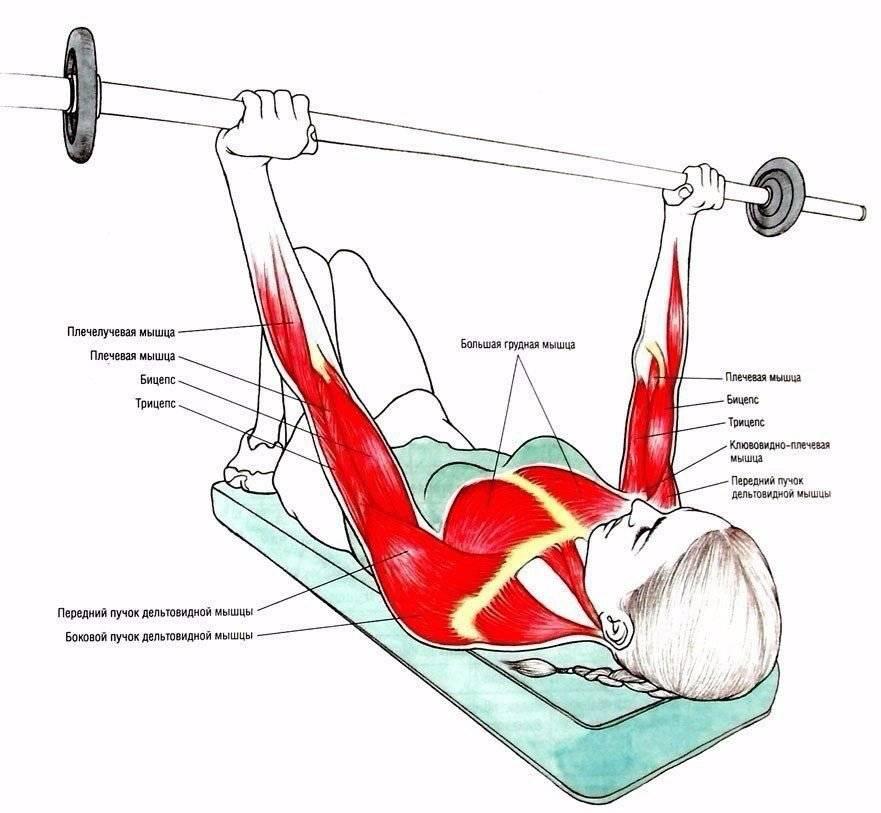 Почему не растут мышцы и что делать, чтобы мышцы начали расти от тренировок