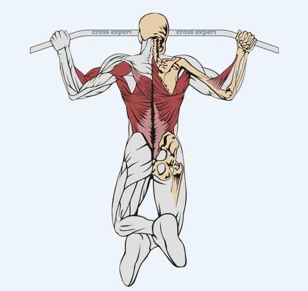 Киппинг подтягивания: техника выполнения упражнения