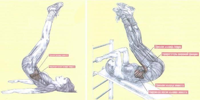 Подъём ног сидя (складка)