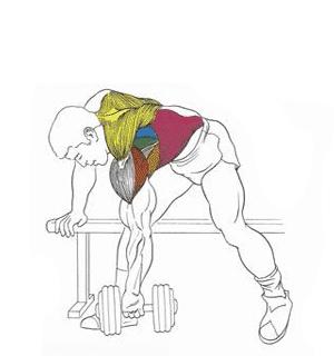 Как накачать плечи (дома и в зале) | как накачать