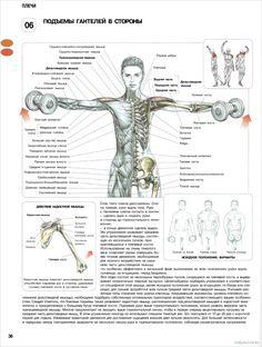 Долой длинные рукава: самые эффективные упражнения для мышц рук