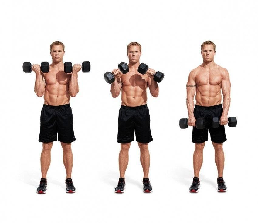 Топ 6 лучших упражнений на трапецию
