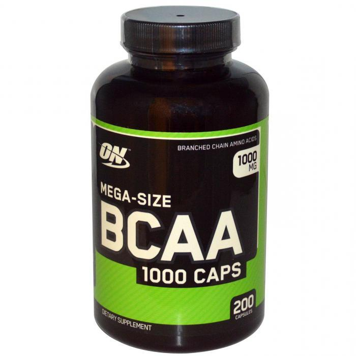 Что лучше протеин или аминокислоты (+ bcaa)? отзывы врачей и экспертов | promusculus.ru