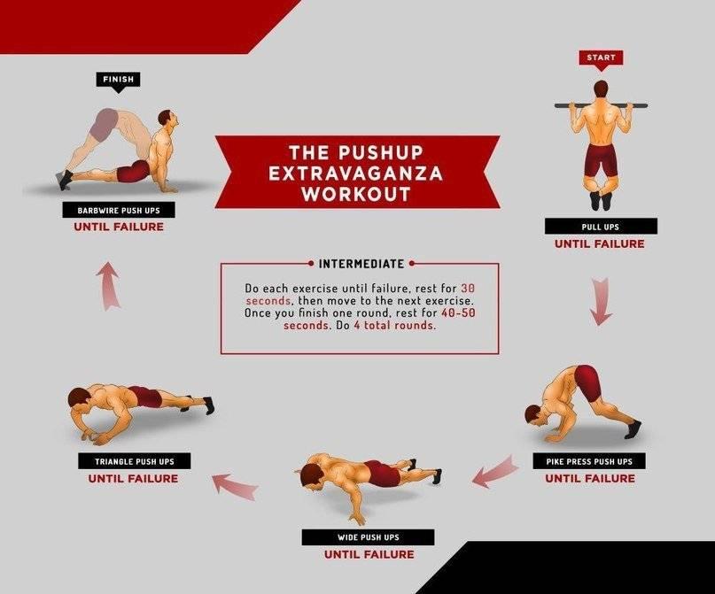 Упражнения на все группы мышц - лучший комплекс. программа тренировок для мужчин в тренажерном зале на все тело