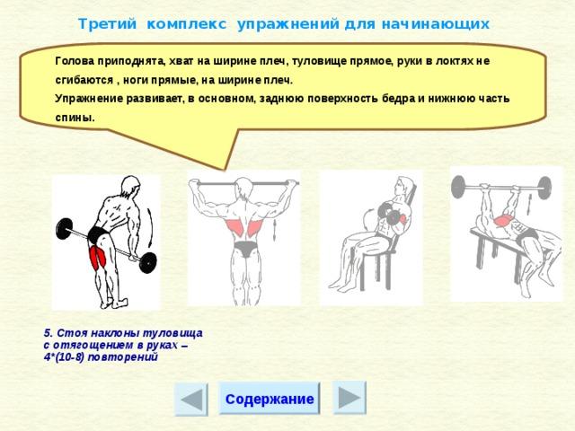 ✅ атлетическая гимнастика: комплекс упражнений для начинающих. атлетическая гимнастика и ее виды - elpaso-antibar.ru