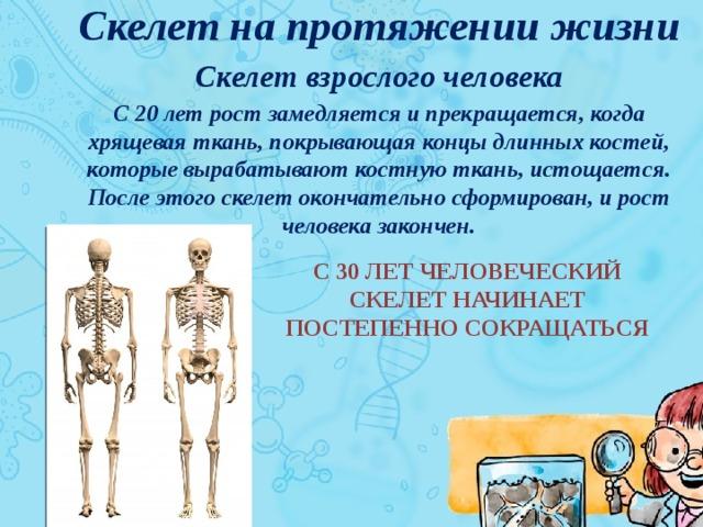 6 костей в человеческом теле, которые можно легко сломать | brodude.ru