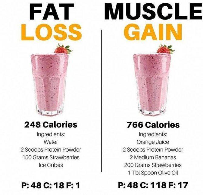 Протеиновые белковые коктейли для похудения