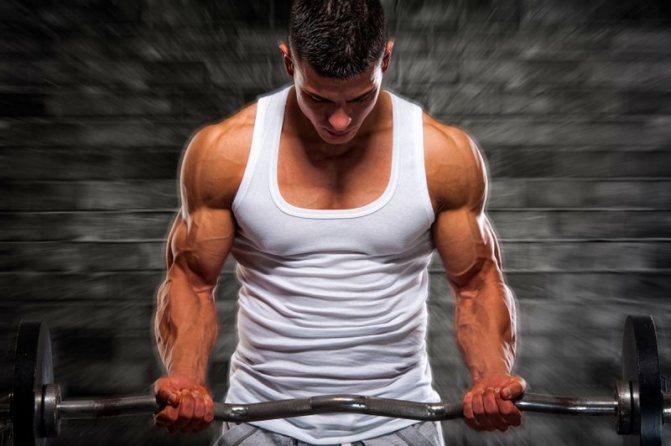 5 стратегий, позволяющих увеличить объем мышц