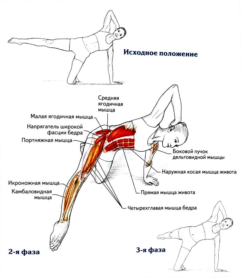 Упражнения для нижней части ягодиц: техника выполнения - tony.ru