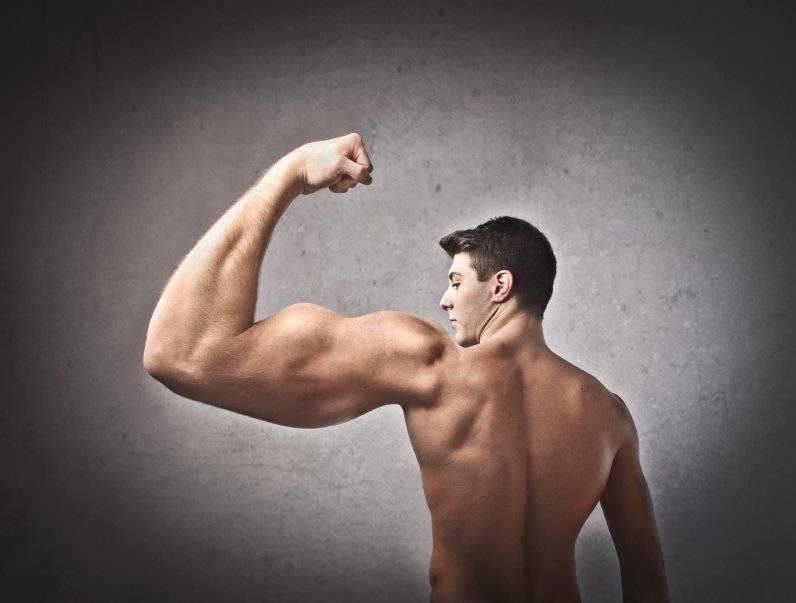 9 советов как правильно качать мышцы рук. упорство де мэя и его секреты накачки рук