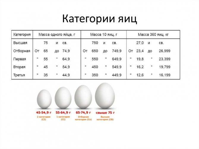 ➤➤➤ яйца калорийность - здоровый образ жизни