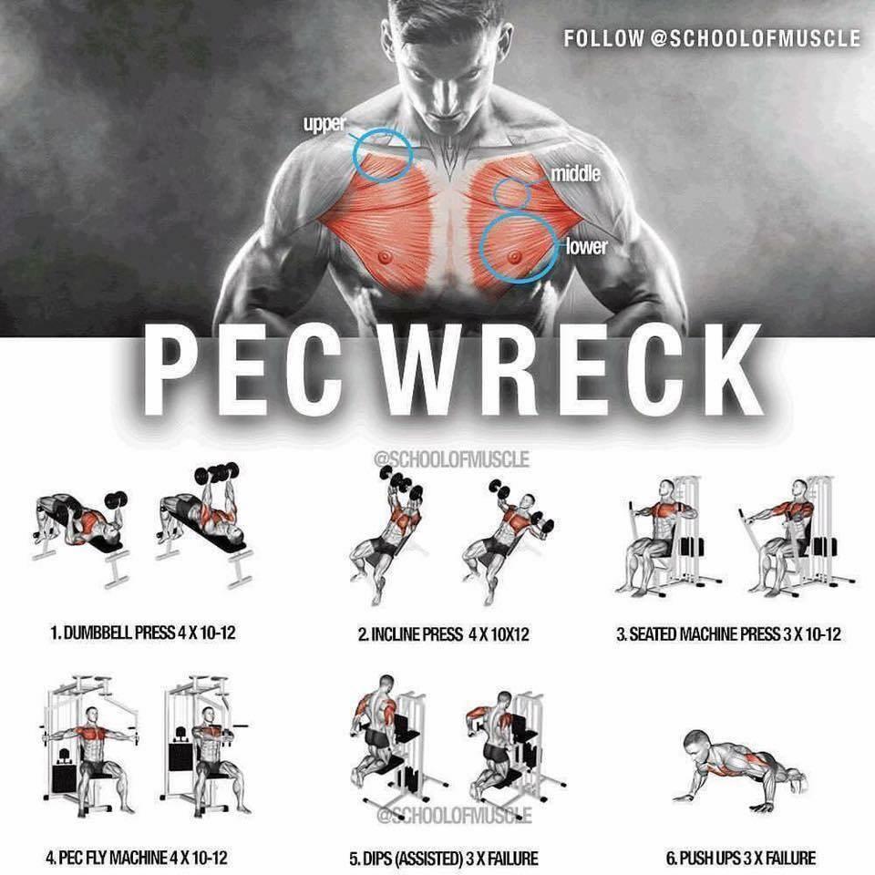 Упражнения для груди. тренировка грудных мышц