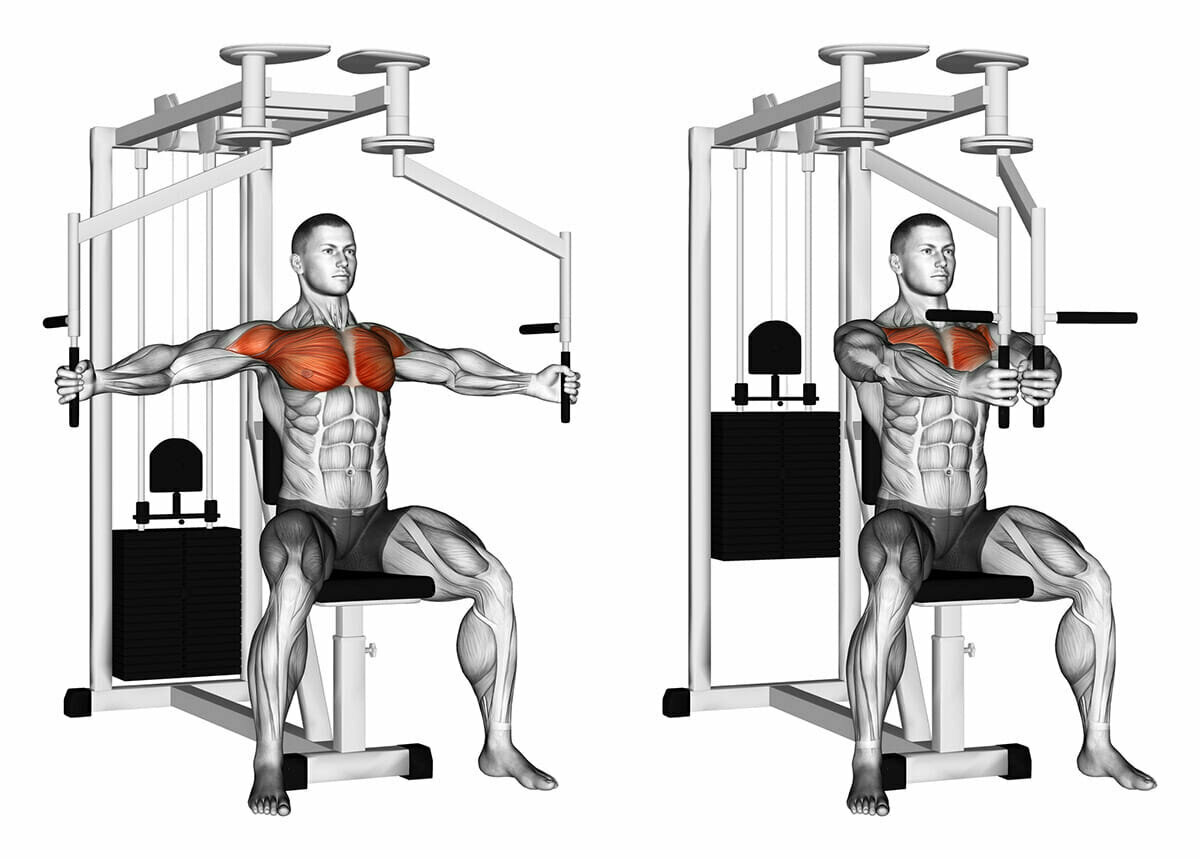 Тренажёры для дома на все группы мышц: основные модели, достоинства и недостатки, подробное описание