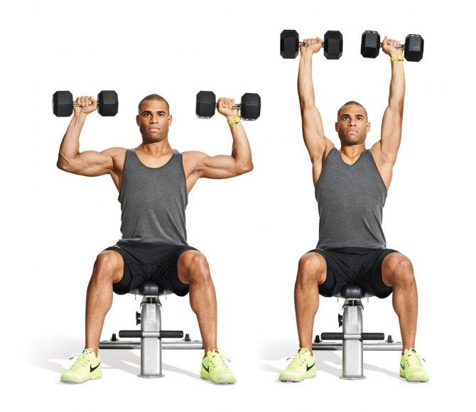 Жим арнольда - какие мышцы работают?