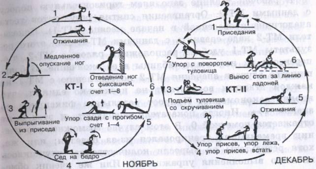 Принципы силовых тренировок