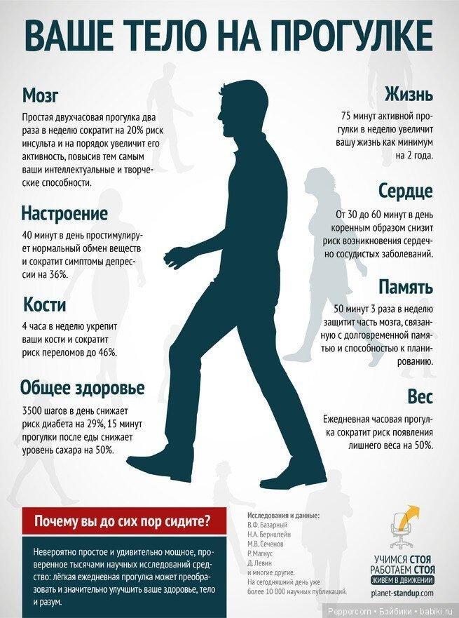 Что произойдет с вашим телом, если каждый день ходить по 10 км? :: polismed.com