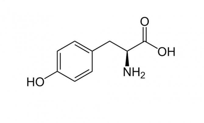 Л-тирозин; польза и вред, инструкция, применение, эффекты