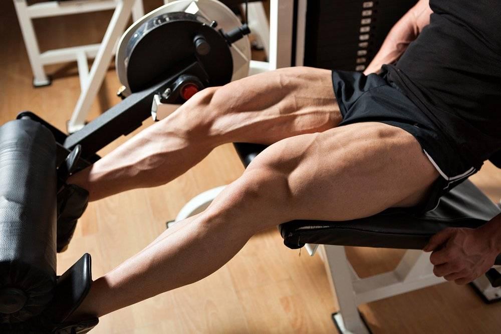 Упражнения на квадрицепс бедра в тренажерном зале