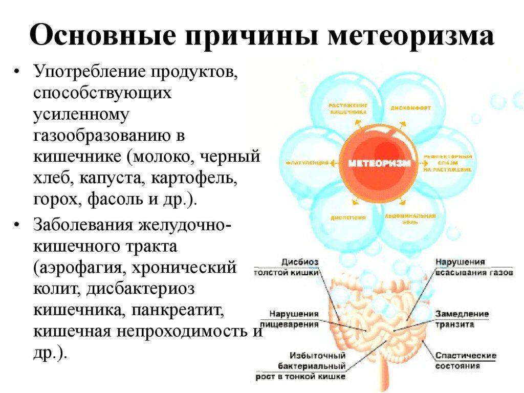 Урчание в животе и метеоризм после еды: причины, как лечить вздутие