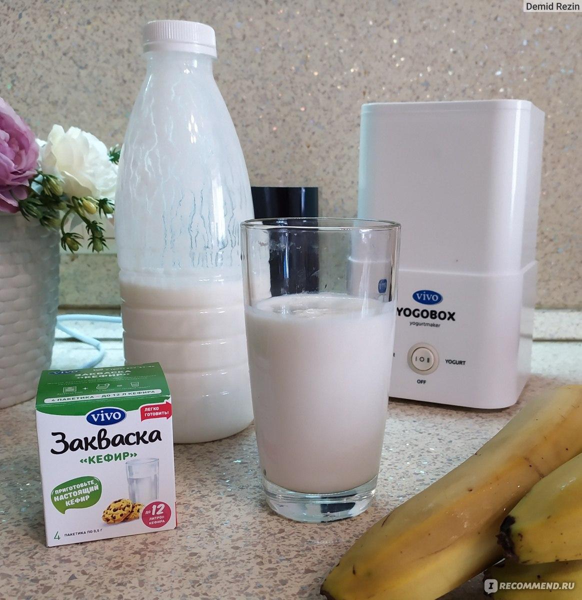 Закваска для йогурта - где купить. лучшие закваски и рецепты приготовления йогуртов в домашних условиях с фото