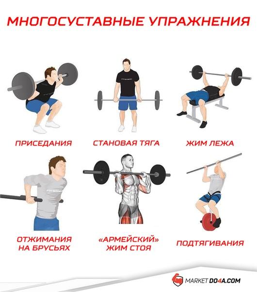 Как стать сильнее: практические схемы, специальные упражнения и методики увеличения силовых показателей в жиме лежа, приседаниях со штангой и становой тяге