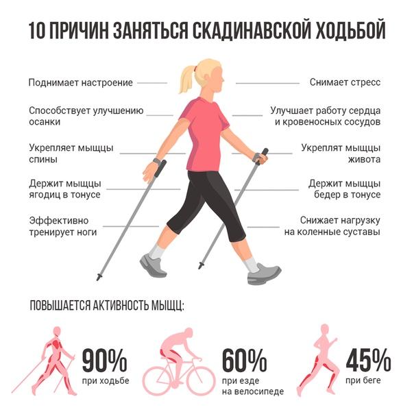 Чем отличается спортивная ходьба от бега и от обычной ходьбы