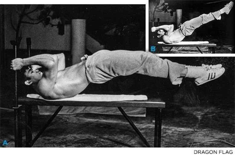 Читать книгу правила тренировок брюса ли. раскрой возможности своего тела (брюс ли) онлайн бесплатно на bookz