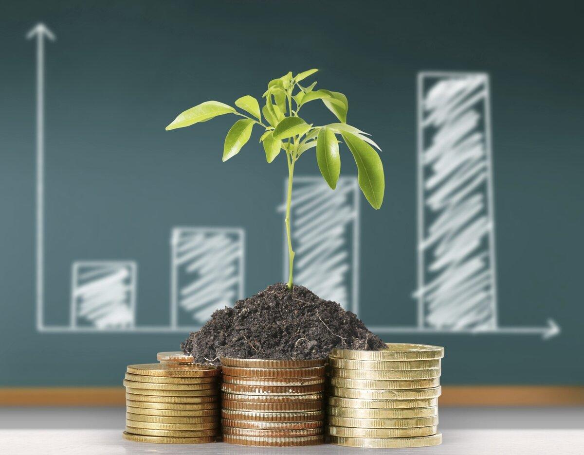 4 варианта инвестиций, которые точно сработают