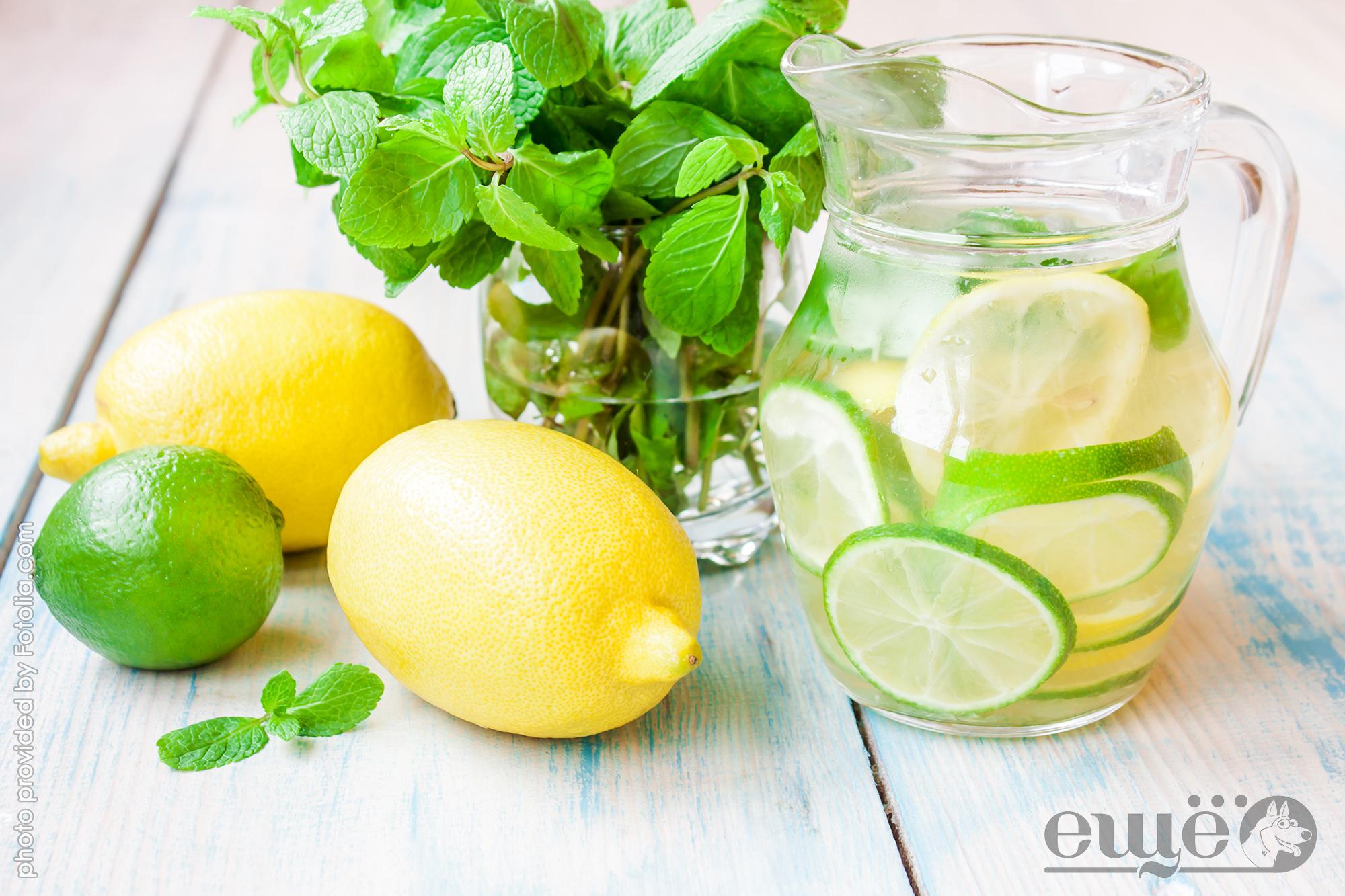 Вода с лимоном с утра натощак: польза и вред, как правильно употреблять