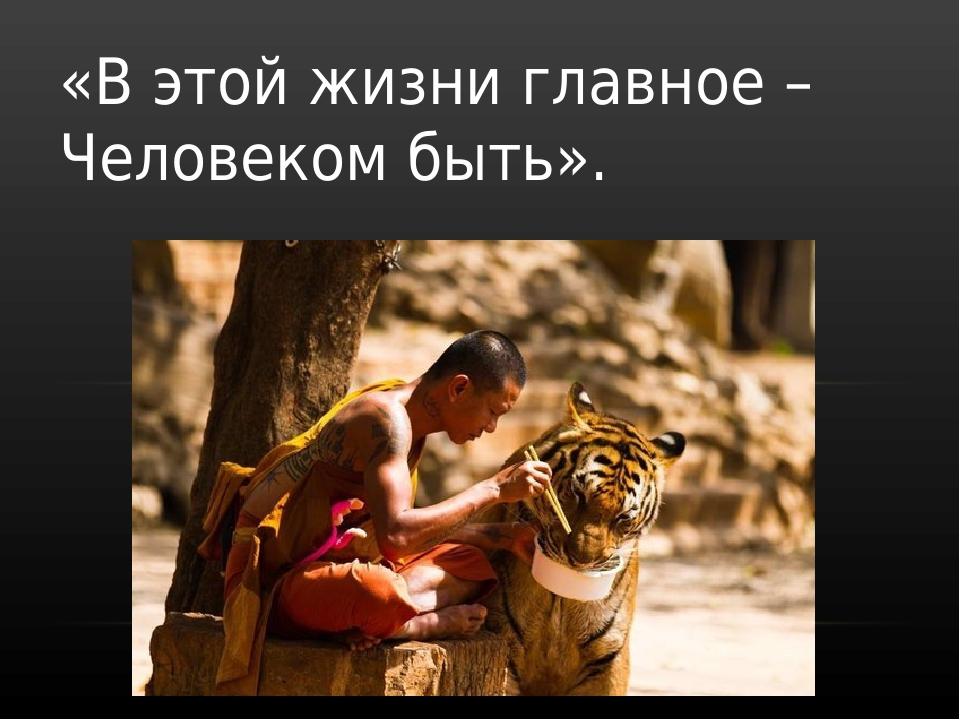 Что главное в жизни? в чем заключается счастье? :: businessman.ru