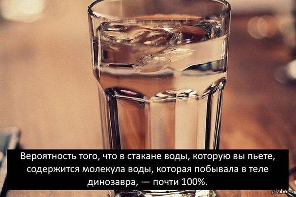 Как пить достаточно воды и делать это правильно: советы голливудского эксперта