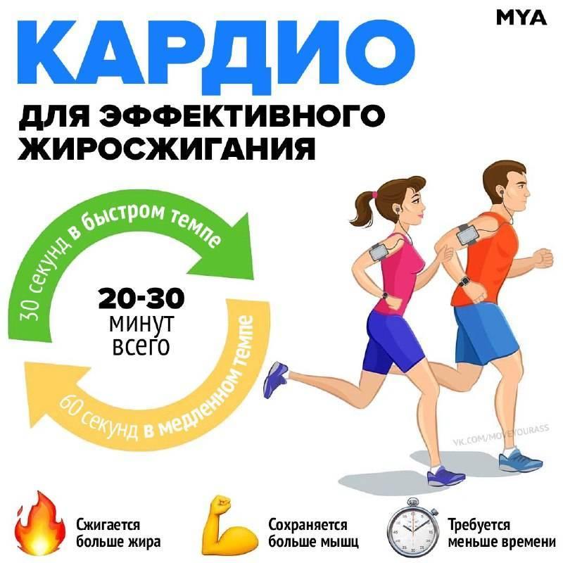 Кардио тренировка для похудения: что делать, чтобы достичь результатов