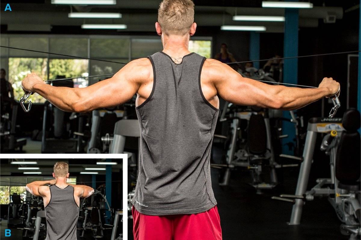 Как накачать плечи в домашних условиях: упражнения без гантелей, штанг и тренажеров