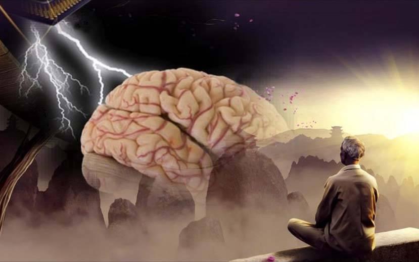 Ментальная связь мышцы мозг как развить. связь мозг-мышцы. качаемся правильно. тренинг грудных мышц